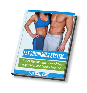 Fat Dimnisher System PDF
