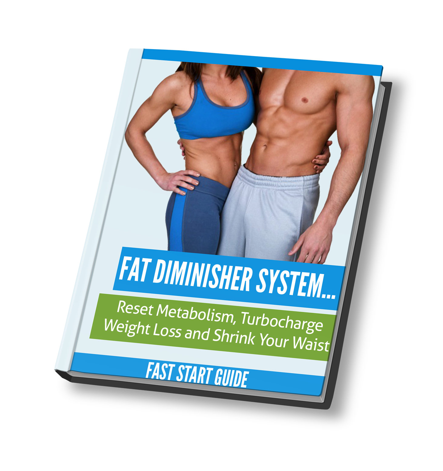 Fat Dimnisher System