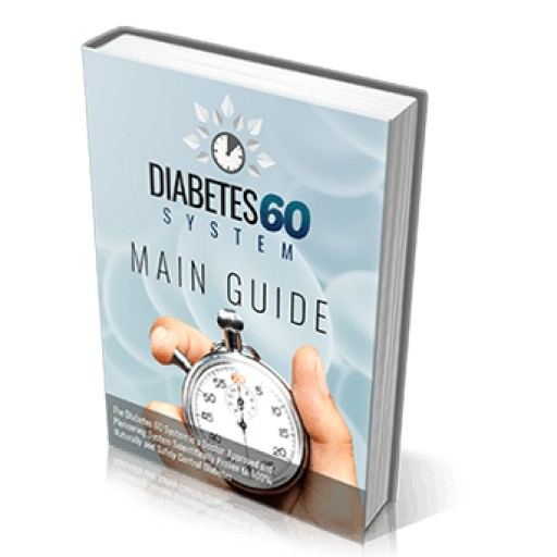 Ryan Sheltons Diabetes 60 System