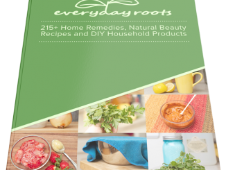 Everyday Roots Book PDF